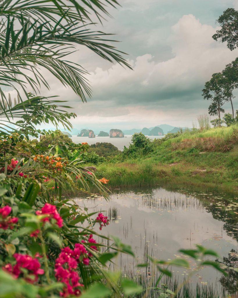 9 hornbills thailand